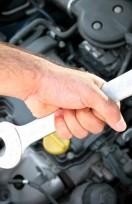 Maintenance: Oil